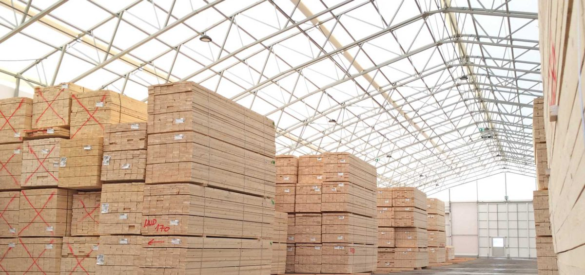 Wintergeschlägertes Holz